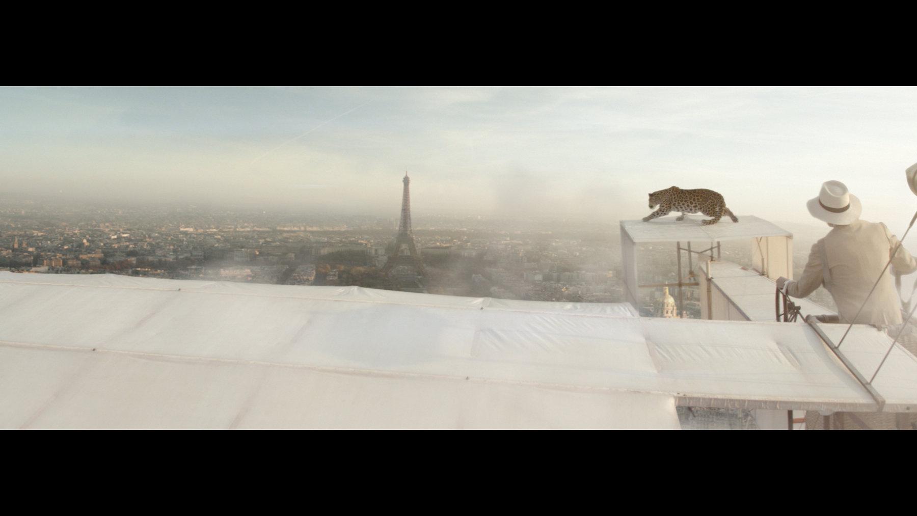 L'Odyssée de Cartier -The Panther Airplaine Scene