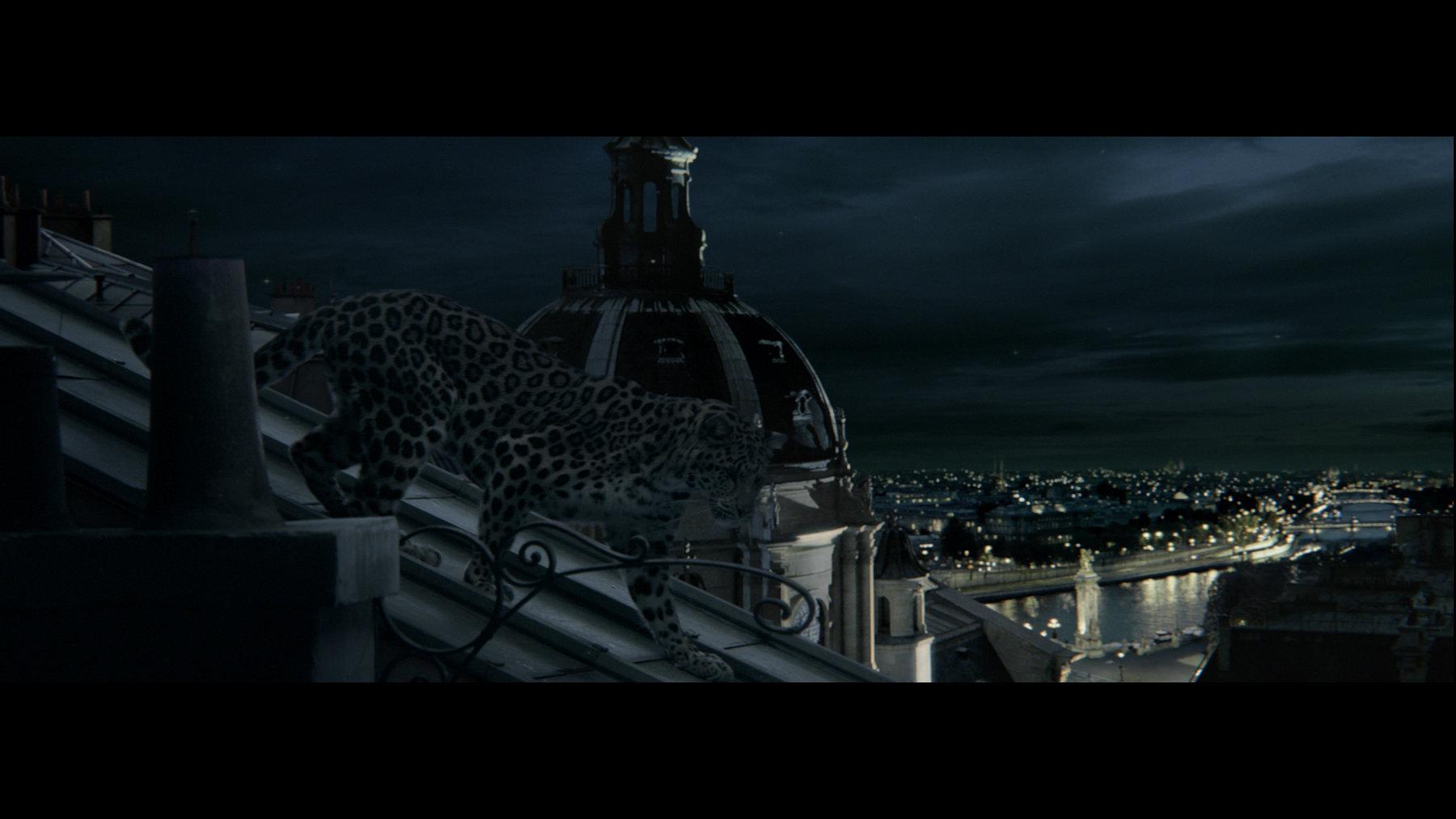 L'Odyssée de Cartier - The Panther
