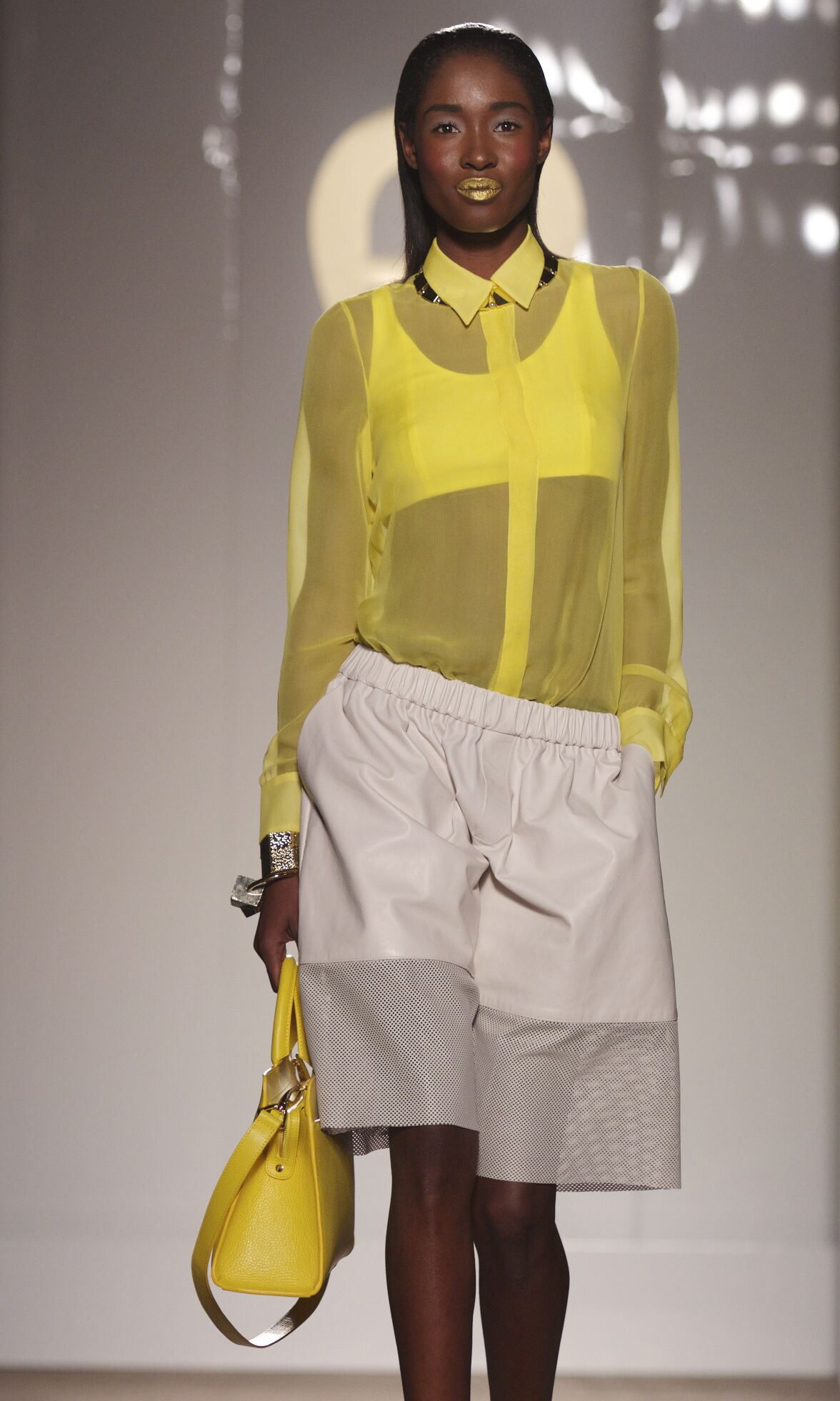 Spring Summer 2014 Fashion Women's Collection Aigner