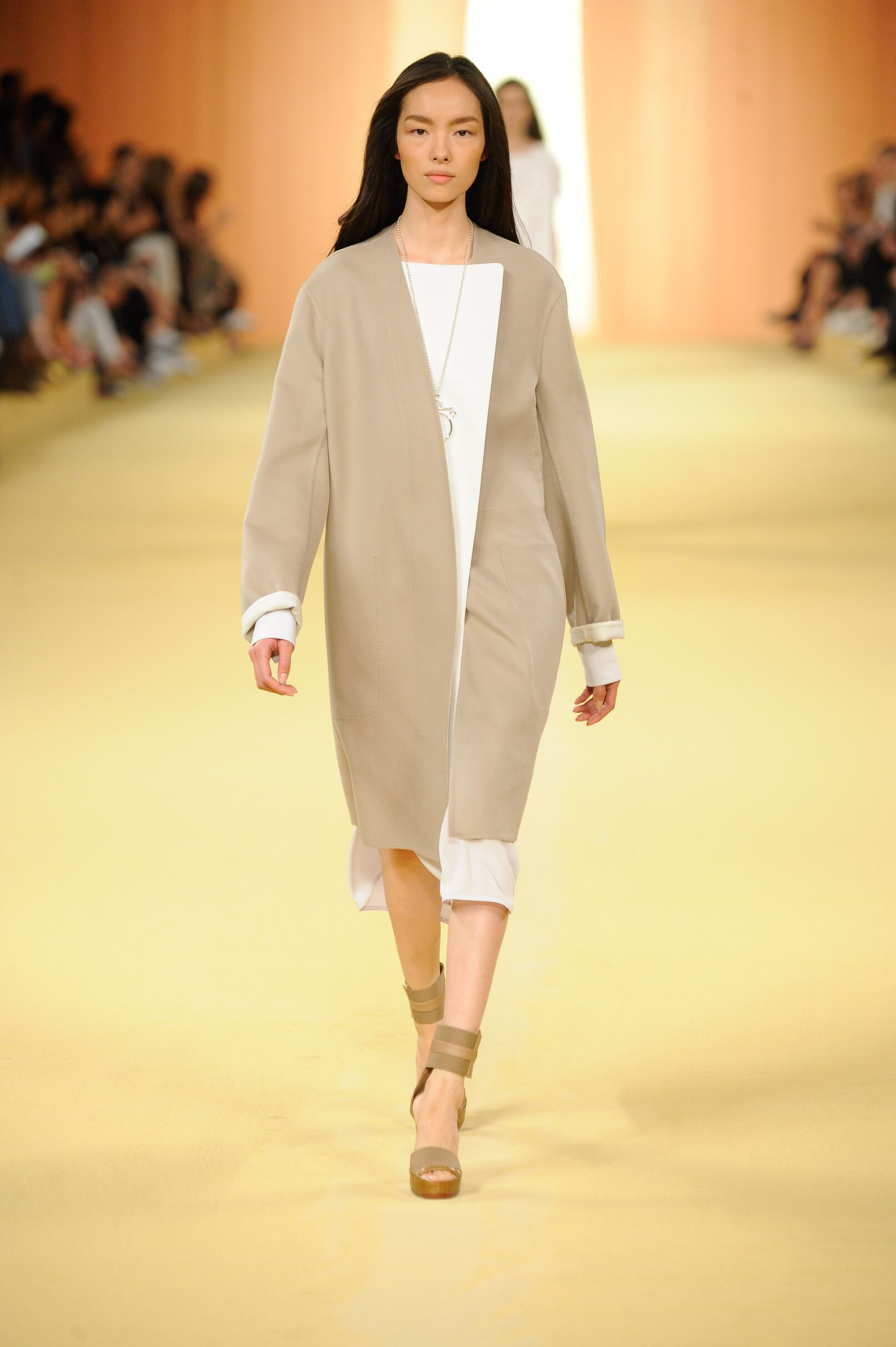 Hermès Spring Summer 2015 Womens Collection Paris Fashion Week