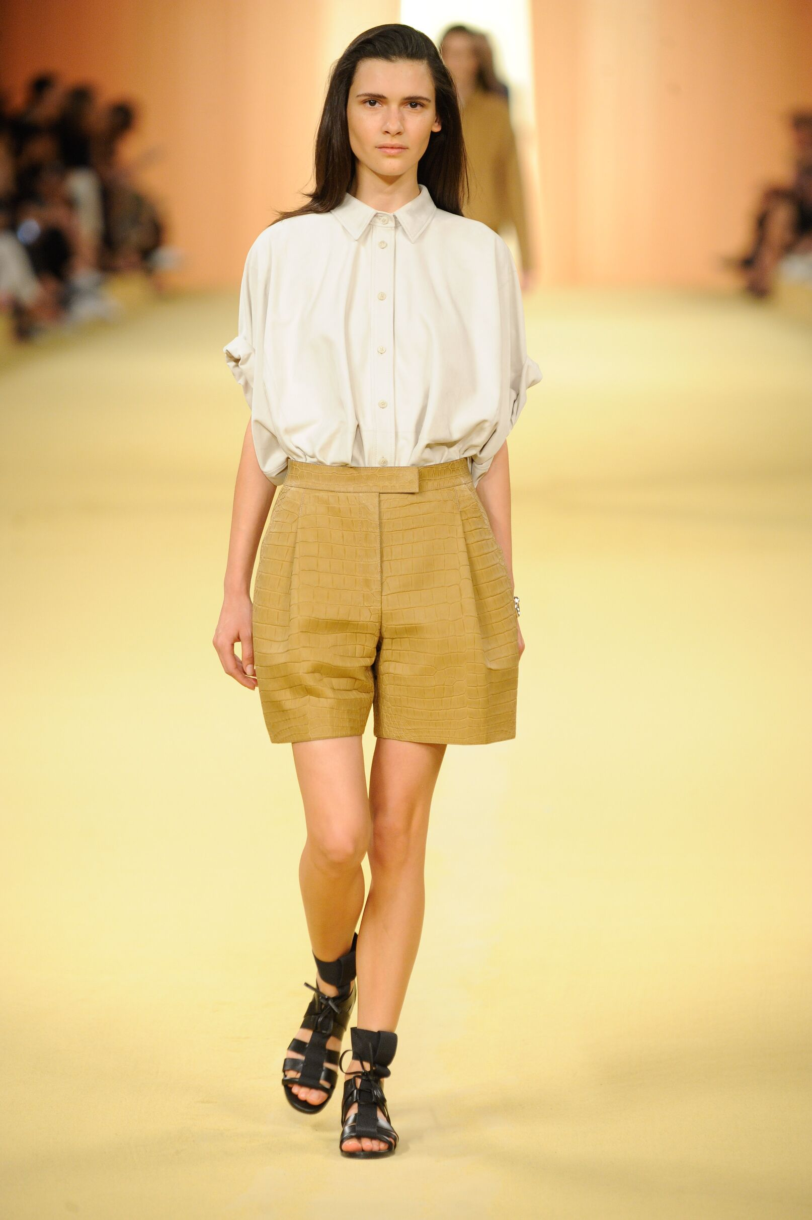Runway Hermès Spring Summer 2015 Women's Collection Paris Fashion Week