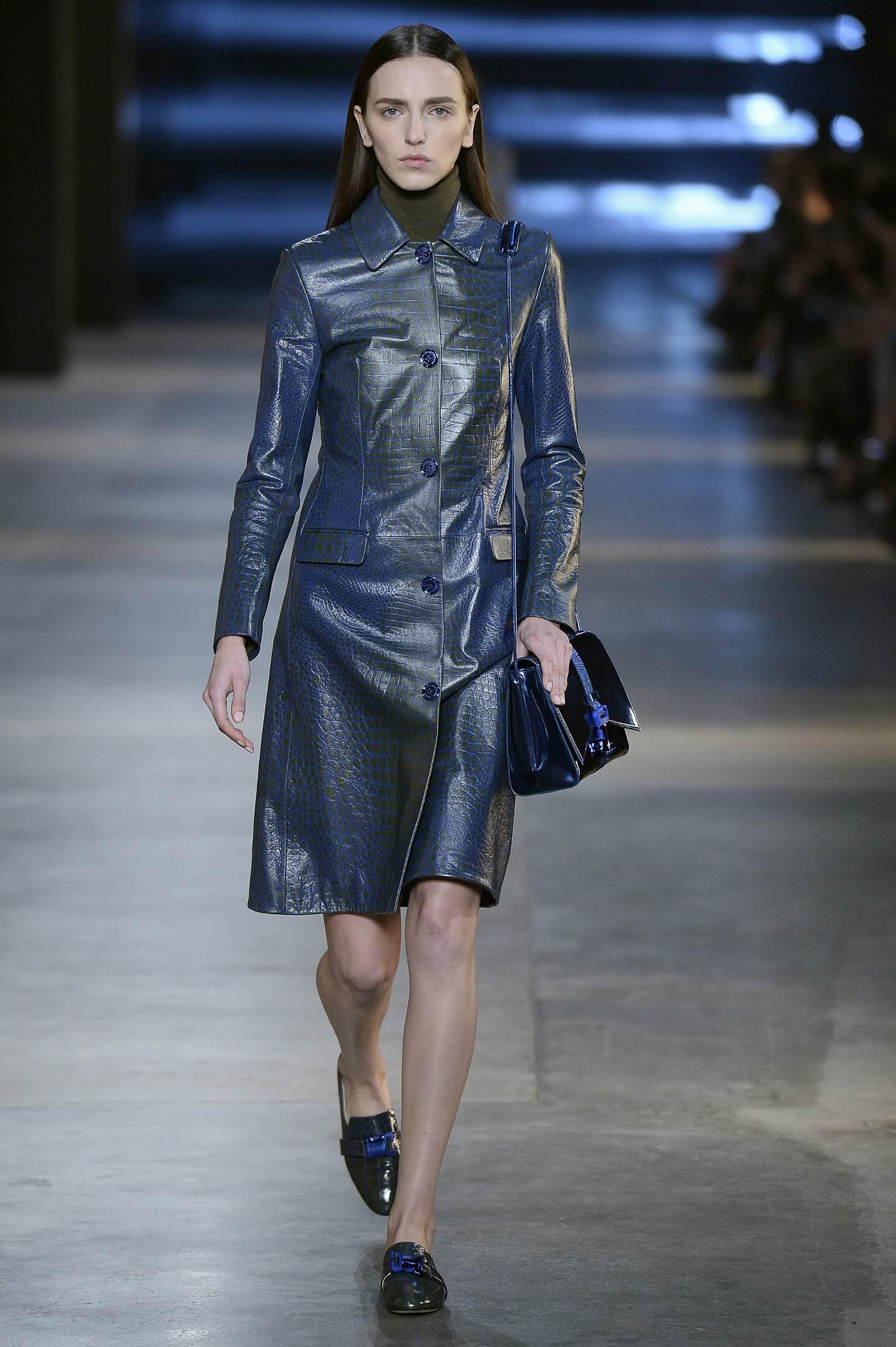 2016 Fall Fashion Woman Christopher Kane Collection