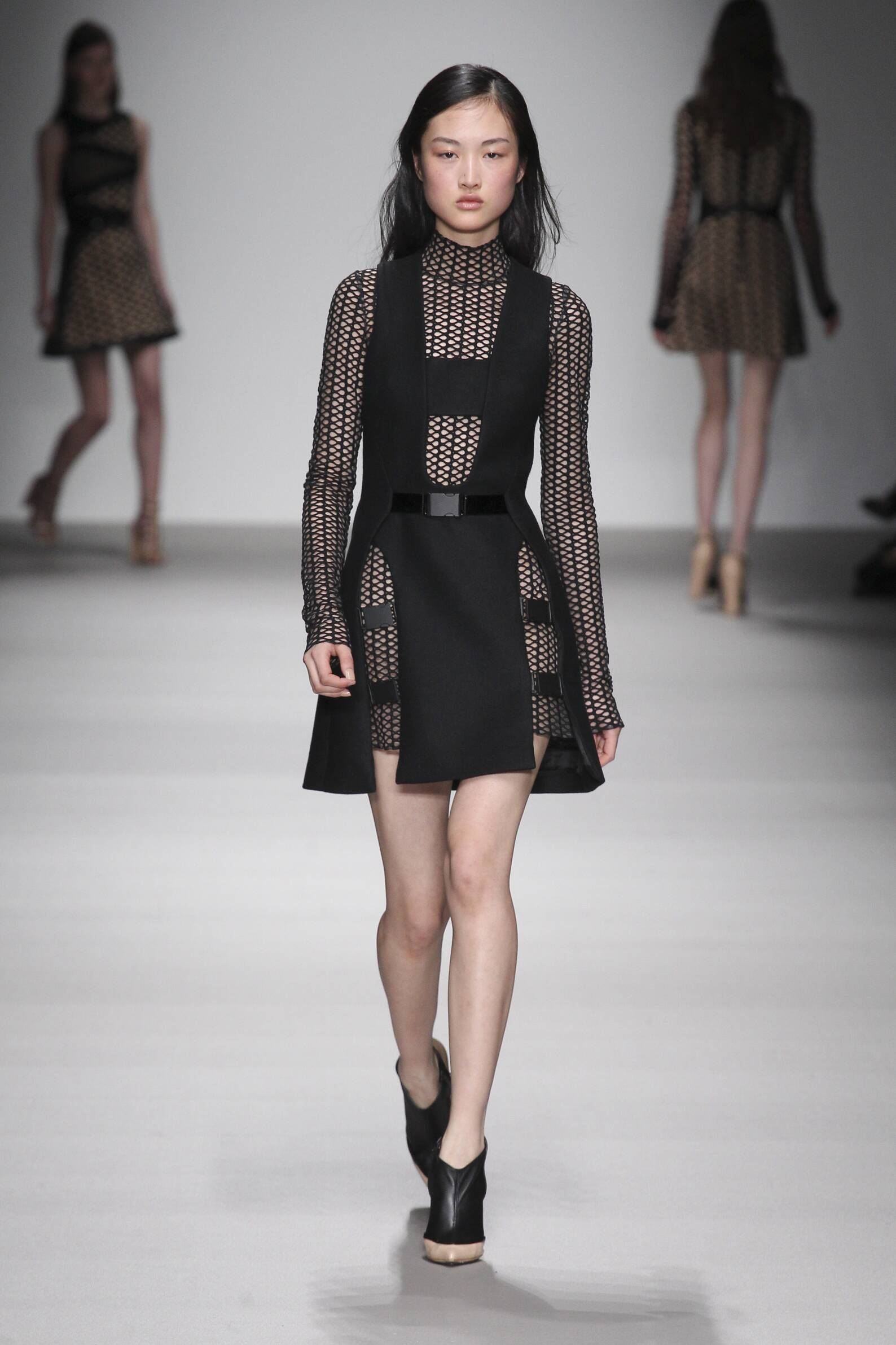 David Koma Collection Fall 2015 Catwalk