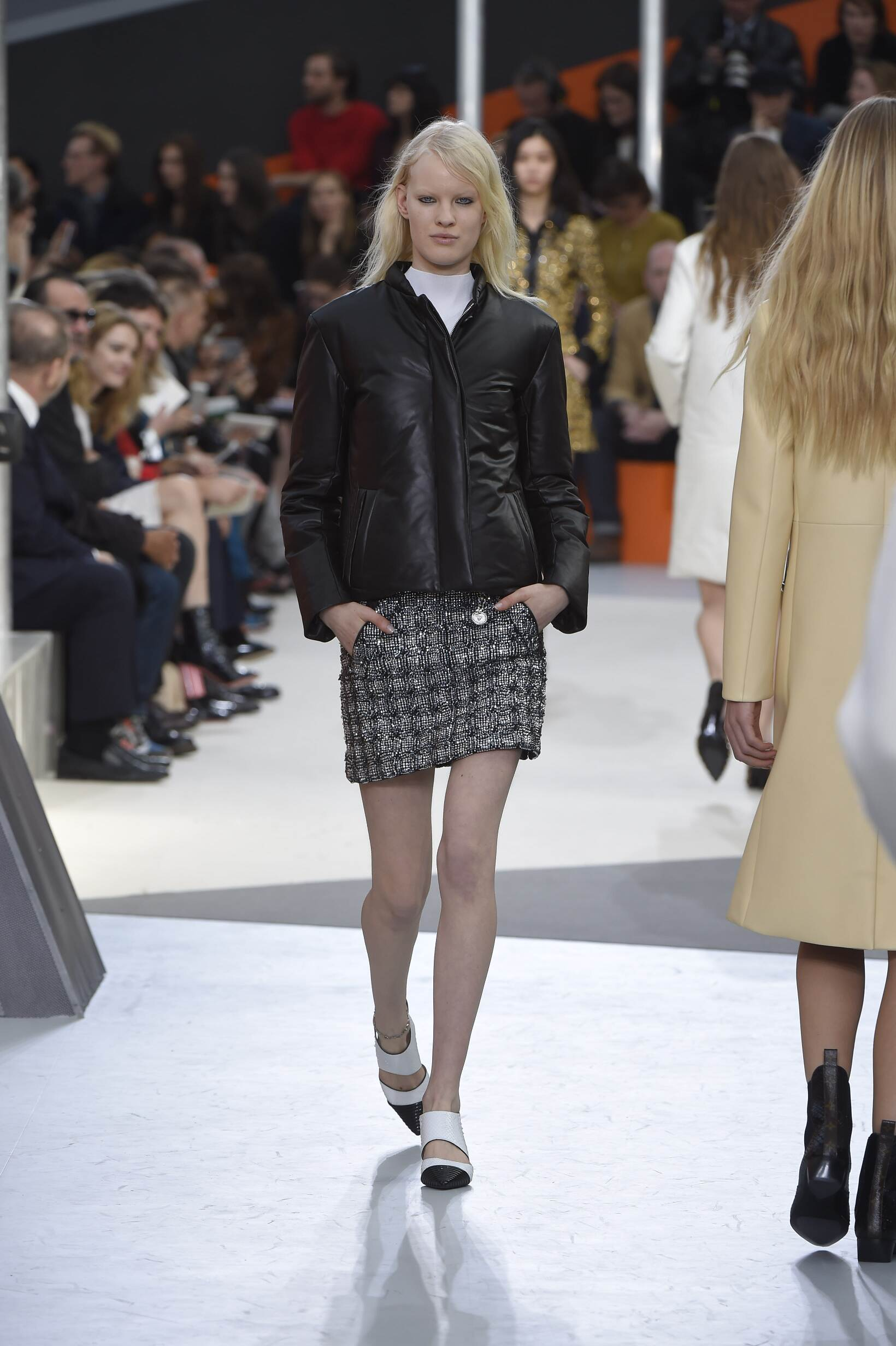 Catwalk Louis Vuitton Womenswear Collection Winter 2015