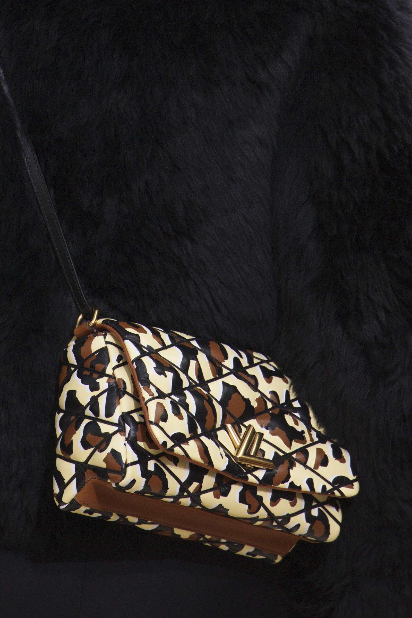 Fall 2015 Women Fashion Show Louis Vuitton Bag Details Collection
