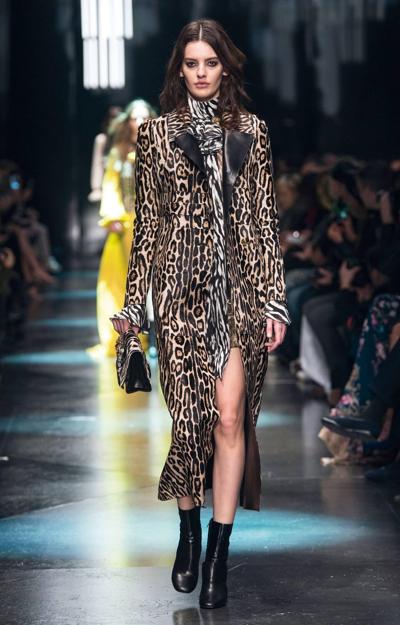 Fall Winter 2015 16 Fashion Collection Roberto Cavalli