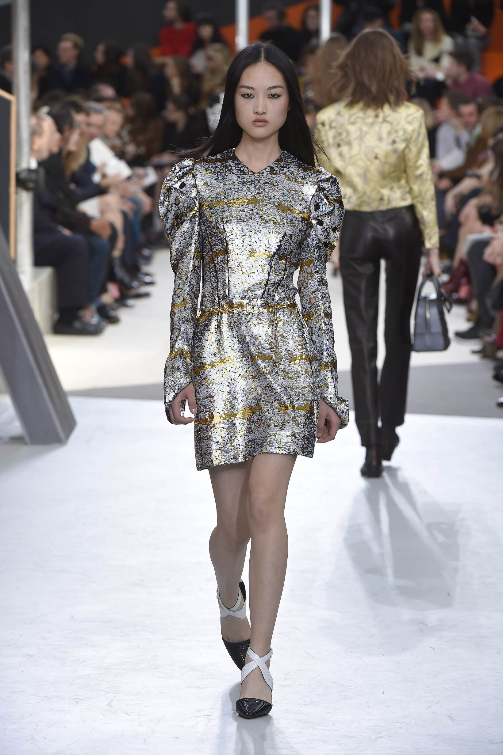Fashion Show FW 2015 2016 Louis Vuitton Womenswear