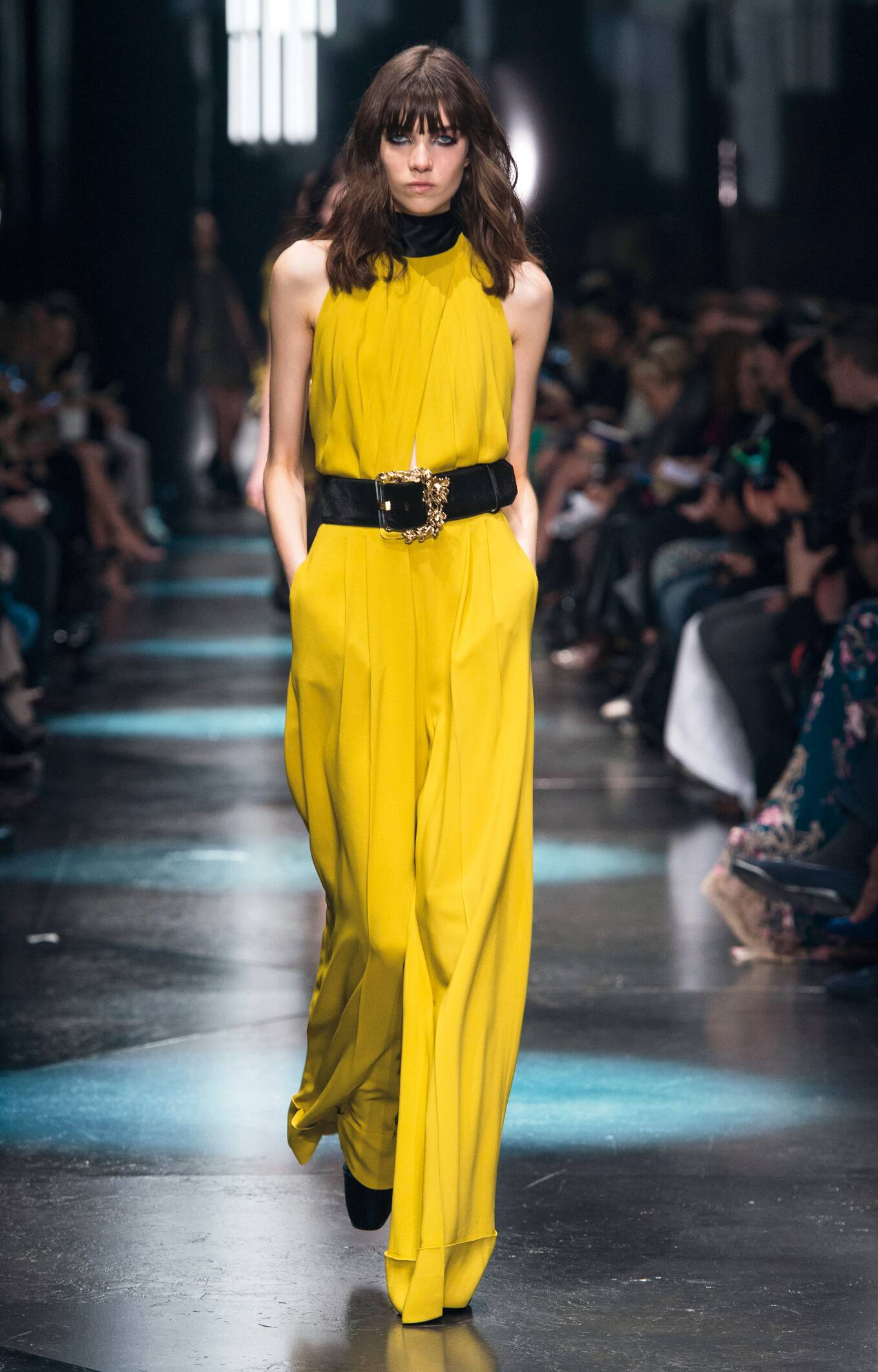 Roberto Cavalli Fall Winter 2015 16 Women S Collection