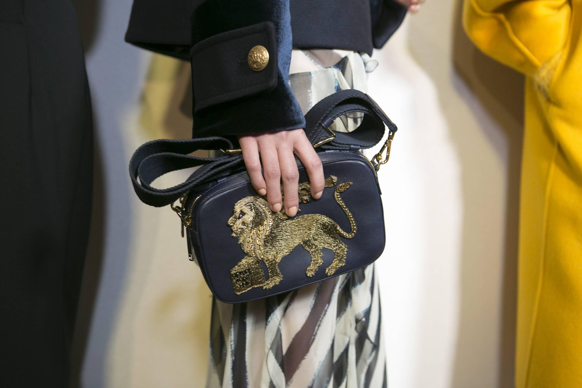 Backstage Alberta Ferretti Detail Bag
